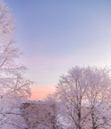 Wonderful sunrise after snow storm